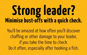 check your leader often to ensure it is not damaged and weakened