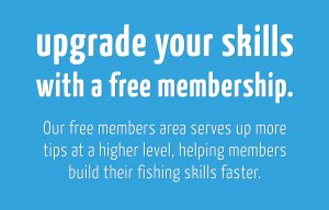 upgrade your skills with a free membership to fishotopia