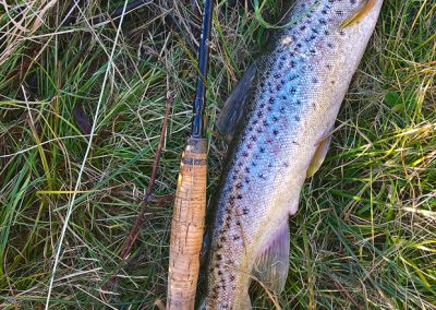 The average size of the trout that came from The Eucumbene, on this particular trip.