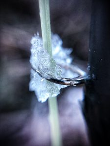 My fly line froze in the guides before I even tried to cast. This is a picture of an iced-up runner on my fly rod.