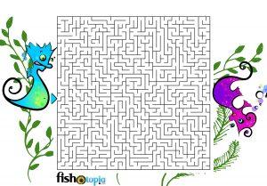 fishotopia kids fishing activity - Maze 2