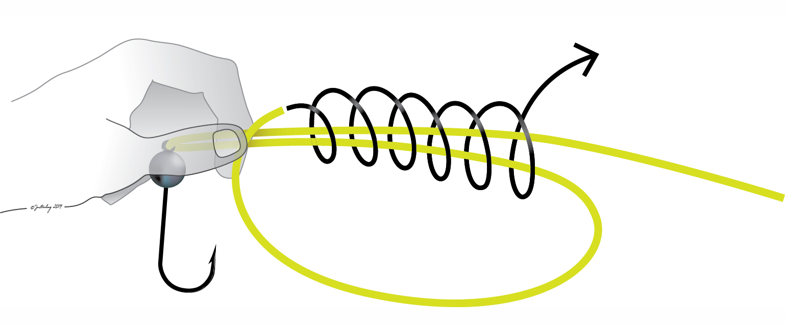 step two in how to tie the uni knot. Pinch the backhand loop against the main line or leader, above the eyelet. Wrap the tag end of the line or leader around both main strands and through the loop (as shown below) four to eight times. Use less turns or wraps in heavy line and more in light line, and always make at least seven or eight turns if tying this knot in braided or fused gel-spun polyethylene (GSP or PE) line. © Fishotopia.com