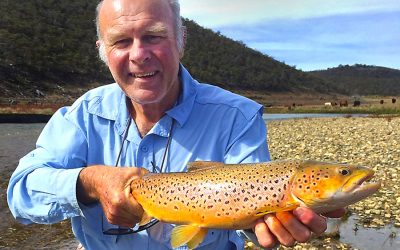 Snowy Hydro 2.0 Recreational Fishing Offset A Win For Fishos, Thanks To Monaro Acclimatisation Society.