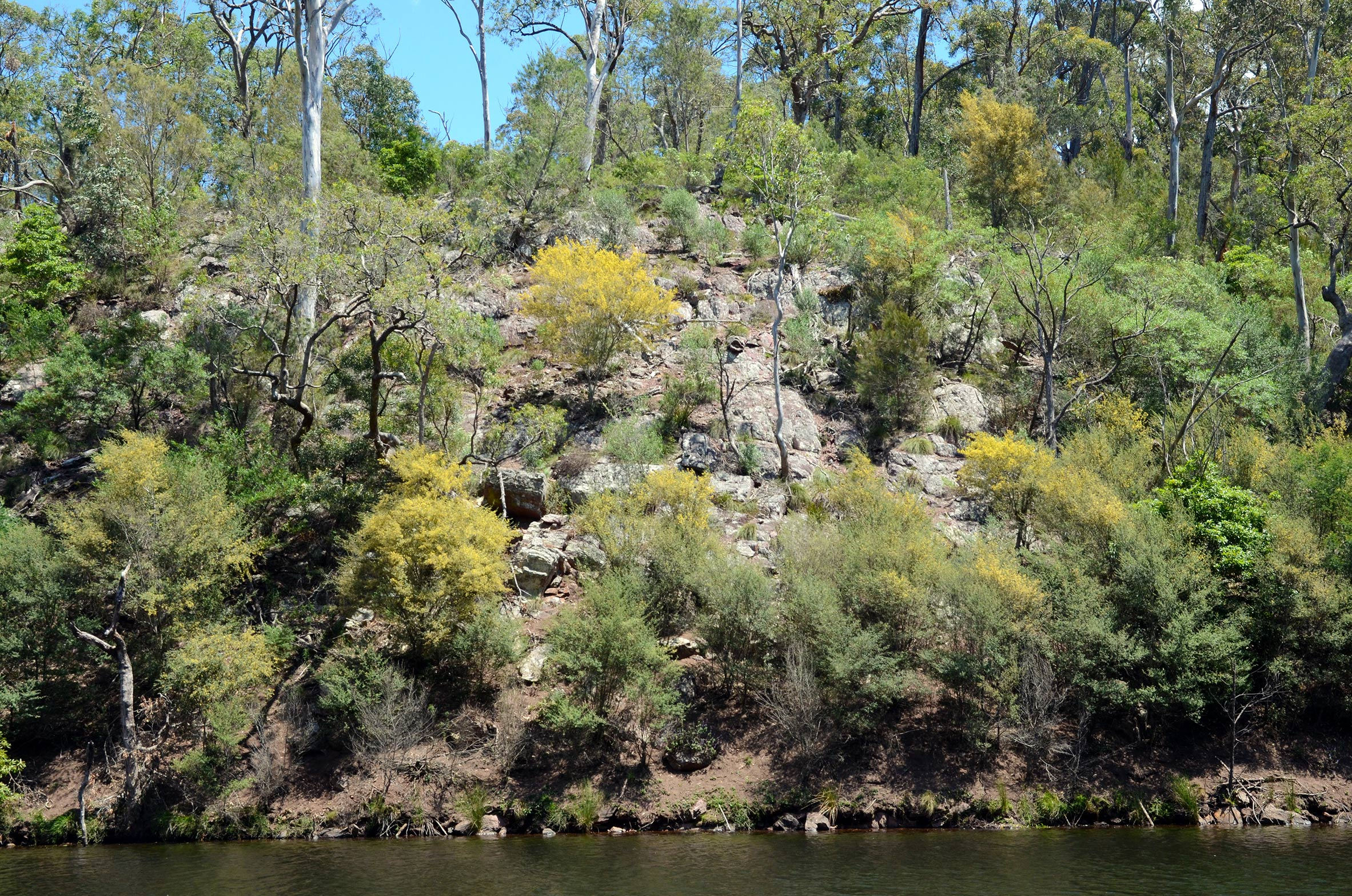 The shoreline is rugged and heavily vegetated in many parts.